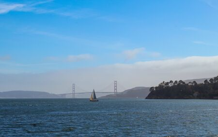 San Francisco Bay from Tiburon, California