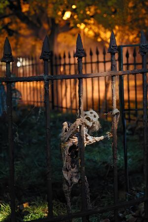 A spooky skeleton lit by a spot light screams in anguish on Halloween