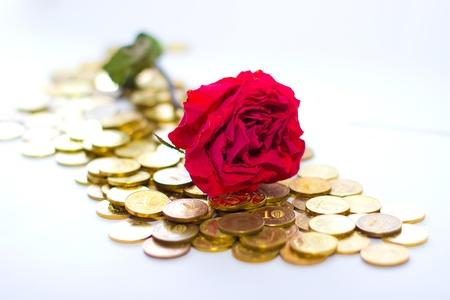 coi: Rose in money