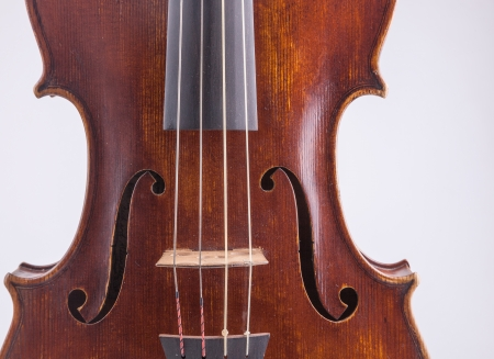 Viola in closeup shot