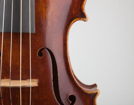 violin making: Viola in closeup shot