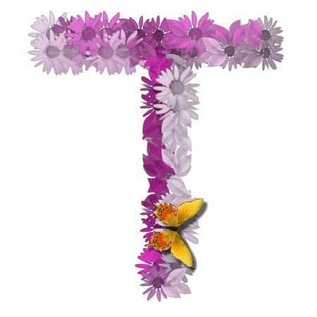 vowel: alphabetical letter pink color forms daisy, letter T