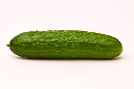 Little Cucumber photo