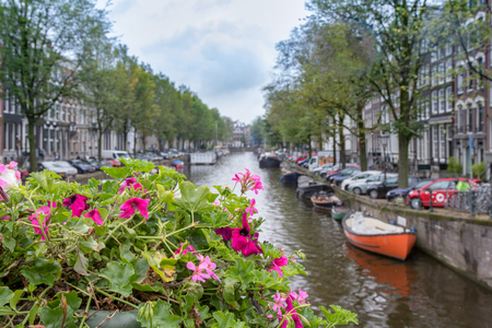 Flowers on a bridge at Amsterdam in autumn, Netherlands