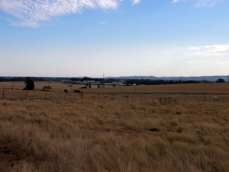 willamette: grassy plain, Willamette Valley, Oregon
