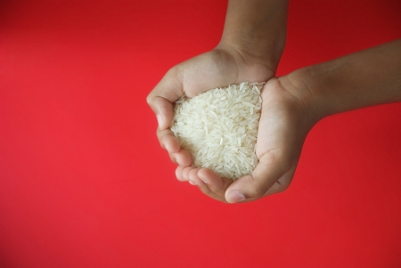 Rice in a kid palm with red background photo