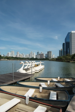 The rowboat and swan boats anchor in the urban park photo
