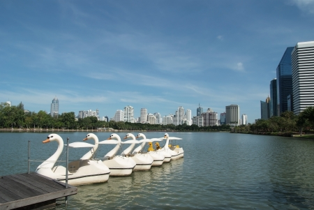 The swan boats anchor in the urban park  photo