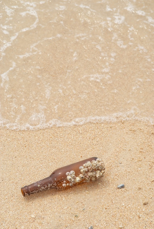 Beer bottle with a barnacle on the beach