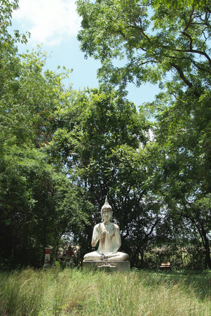 The old stucco buddha is located in the forest Stock Photo