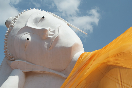 The big buddha statue below the blue sky