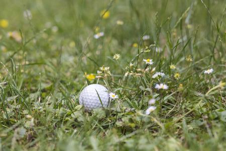golfball photo