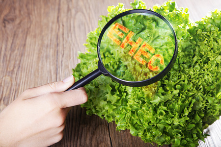 diat product: salad take under the magnifying glass Stock Photo