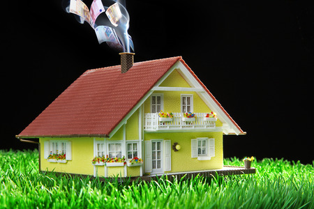 house miniatur with garden and money photo