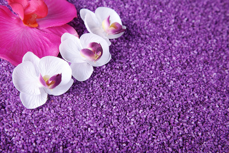 margerite: beautiful orchid decorated with lilac sand