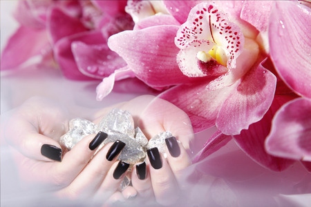 black long nails with orchid and silver nugget photo