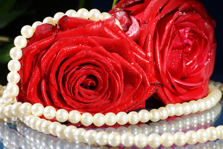 margerite: red rose decorated with jewelry on dark underground