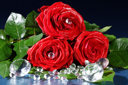 margerite: red rose decorated with rhinestones close up