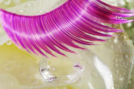 margerite: purple eyelashes on a rose decorated