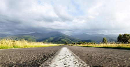 Middle of the road in the midddle of nature