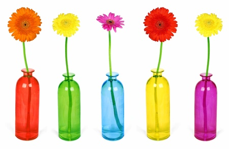 Colorful flowers in vases isolated on white background  photo