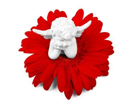 angel de la guarda: Ángel y una flor roja