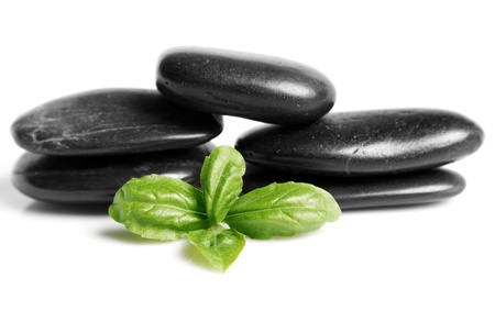 Black stones and leafs isolated on white background Stock Photo - 17872388