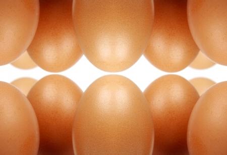 Many eggs Stock Photo