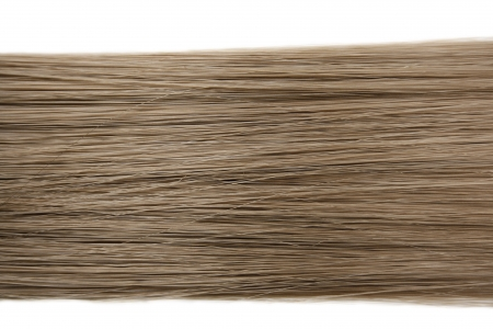 strand of hair: Closeup of long human hair background