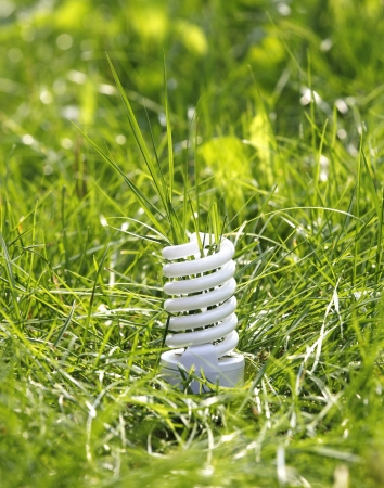 Energy saving concept in the nature photo