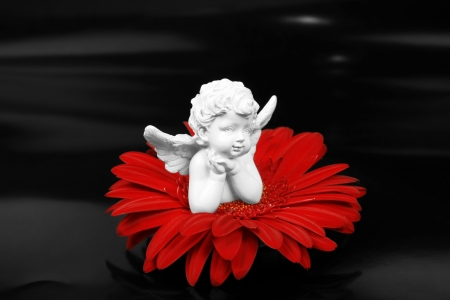 Angel and a red flower photo