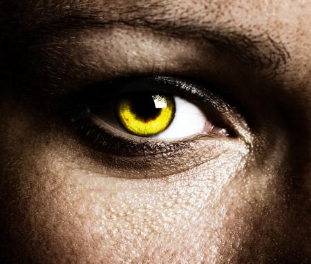 Close up of a beautiful eye photo