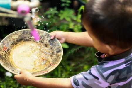 seeping: dingy, fall, falling, fresh, metallic, natural, nature, water,Dish children
