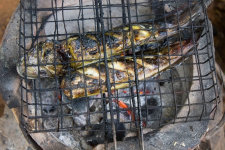 scorched: Grilled, Grill,  steel,  a hot iron,  iron is hot, iron Heating, stove fire scorched food ingredients fish