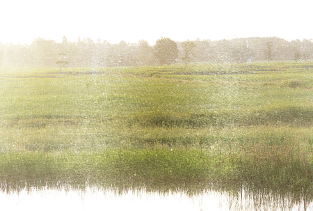 a photo of rural meadow landscape,retro style Stock Photo