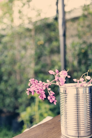 graden: a photo of  pink flowers in can,graden view