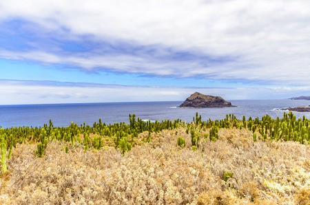depended: In 1706 a large part of Garachico under hinabflieenden of the mountains Pico Viejo lava was buried.