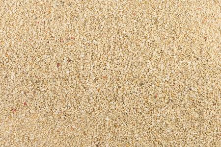 azov sea: Azov sea broken shells sand texture - background.