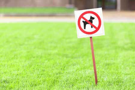 Sign on a plate No walking dog on the green grass. Banque d'images - 106958922