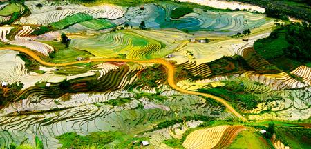 Risaia a schiera in stagione acqua in Laocai, Vietnam Archivio Fotografico - 42557873