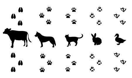 huellas de animales: Vector conjunto de caminar huellas de animales silvestres madera Vectores