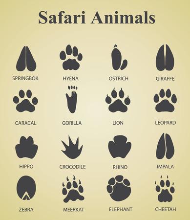 Satz von Safari Tierspuren