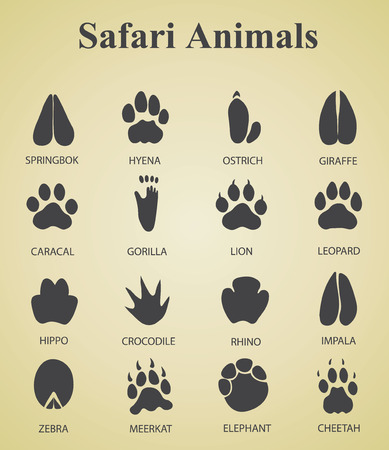 safari animals: set of safari animal tracks