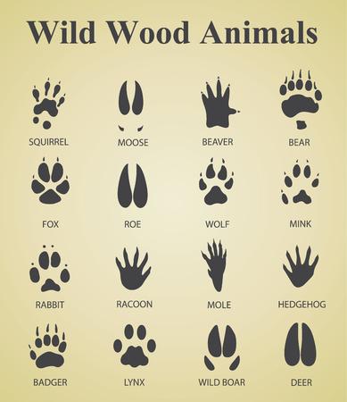 mink: set of wild wood animal tracks