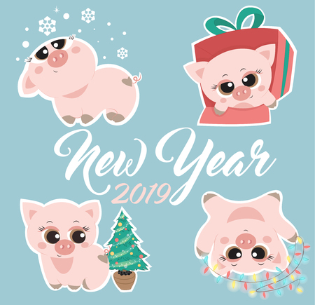 New Years cute pigs a vector illustration