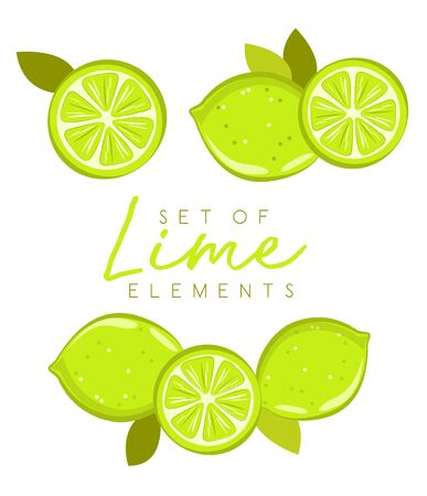 Set of fresh lime fruits, collection of vector illustrations 矢量图像