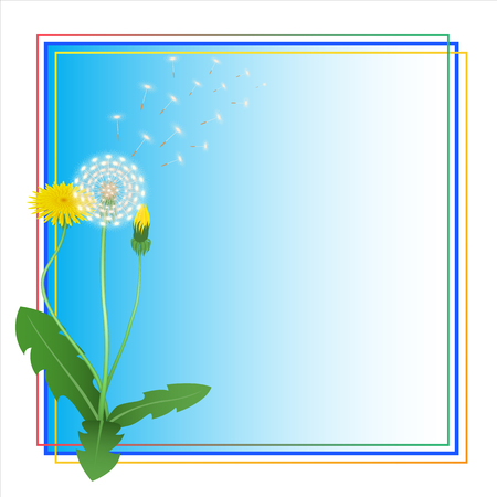 retro flowers: Dandelion Taraxacum Blowball Flower Blue Frame. Blue Vector Background. Place for Text.  Can Used for  Greeting Card, Postkard, Thank You Card,  Invitation, Decorative Backdrop, Floral Illustration. Illustration