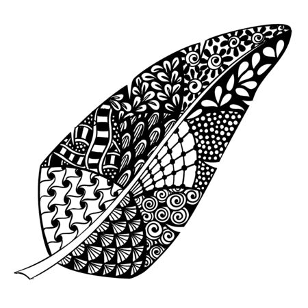Digital hand drawn zen tangle feather on white background