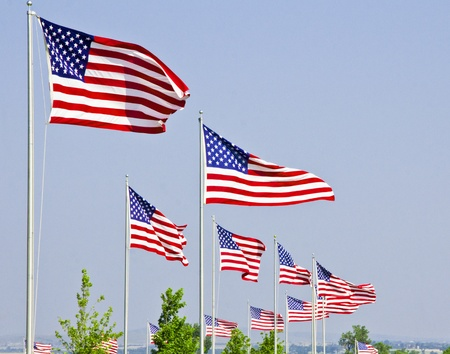 Field of Flags Stock Photo - 9969497