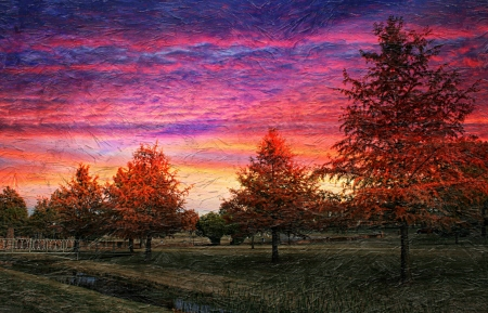 Fall Sunset with Colorful Trees